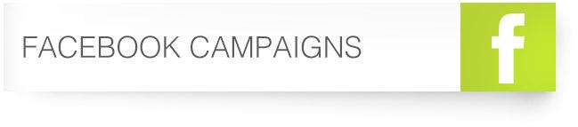 36_Facebook-Campaigns