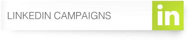 37_LinkedIn-Campaigns