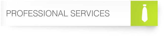 15_Professional-Services